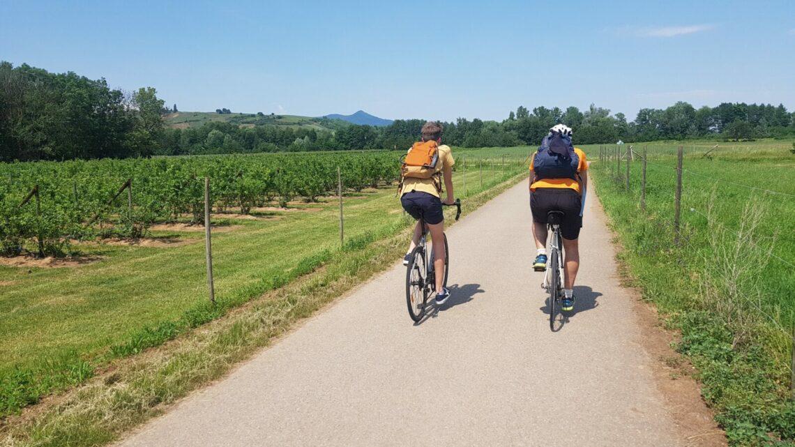 La route des vins d'Alsace à vélo de Bâle à Strasbourg
